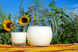 Жиры молока и здоровье