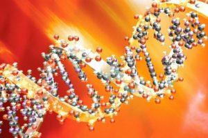 белки острой фазы воспаления