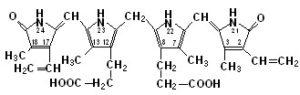 билирубин биохимия