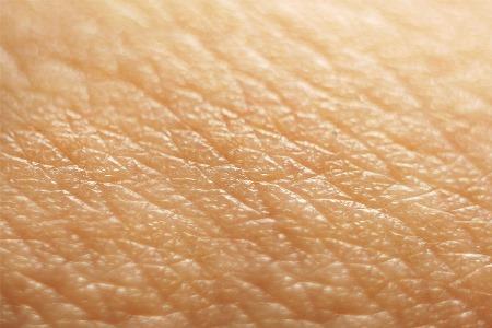 кожа человека