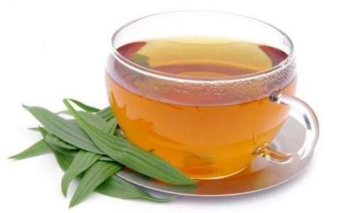 Лекарственные травы для поджелудочной железы