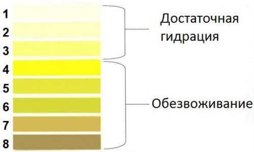 желтая моча