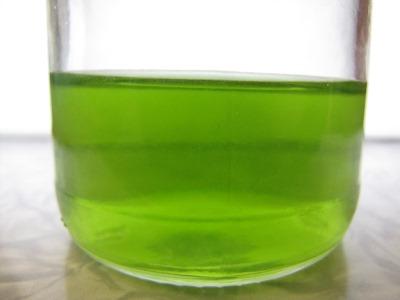 Моча зеленого цвета